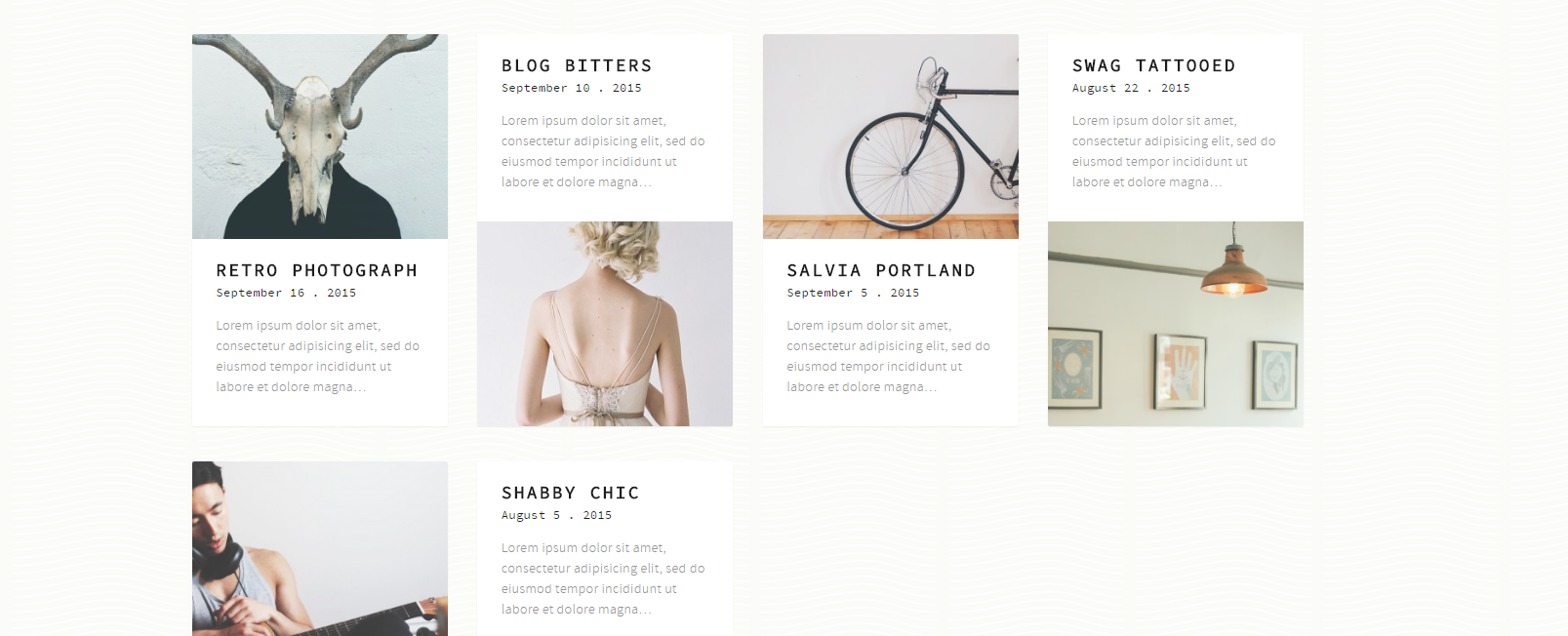 theme wordpress gratuit molly