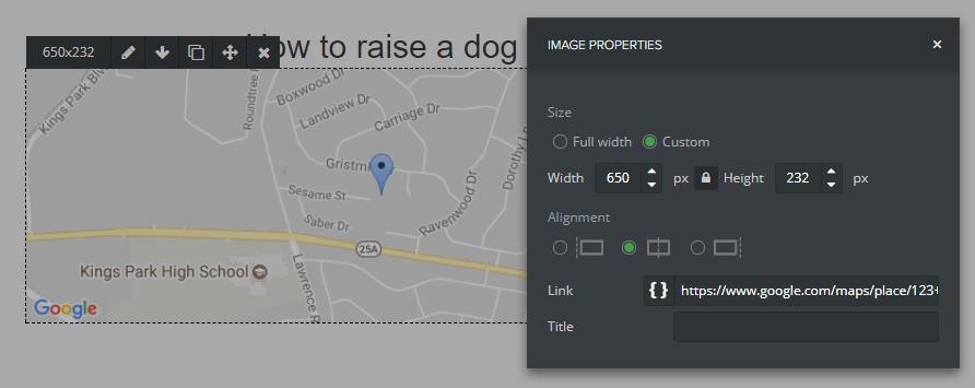 Paramètres de l'image Google Maps