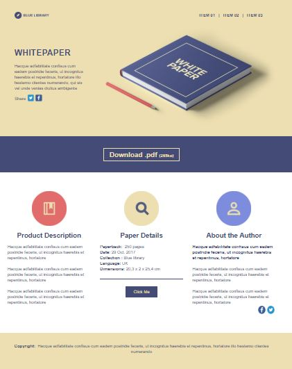 email landing page template